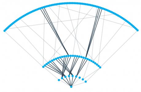 factagon Graph Visualisation